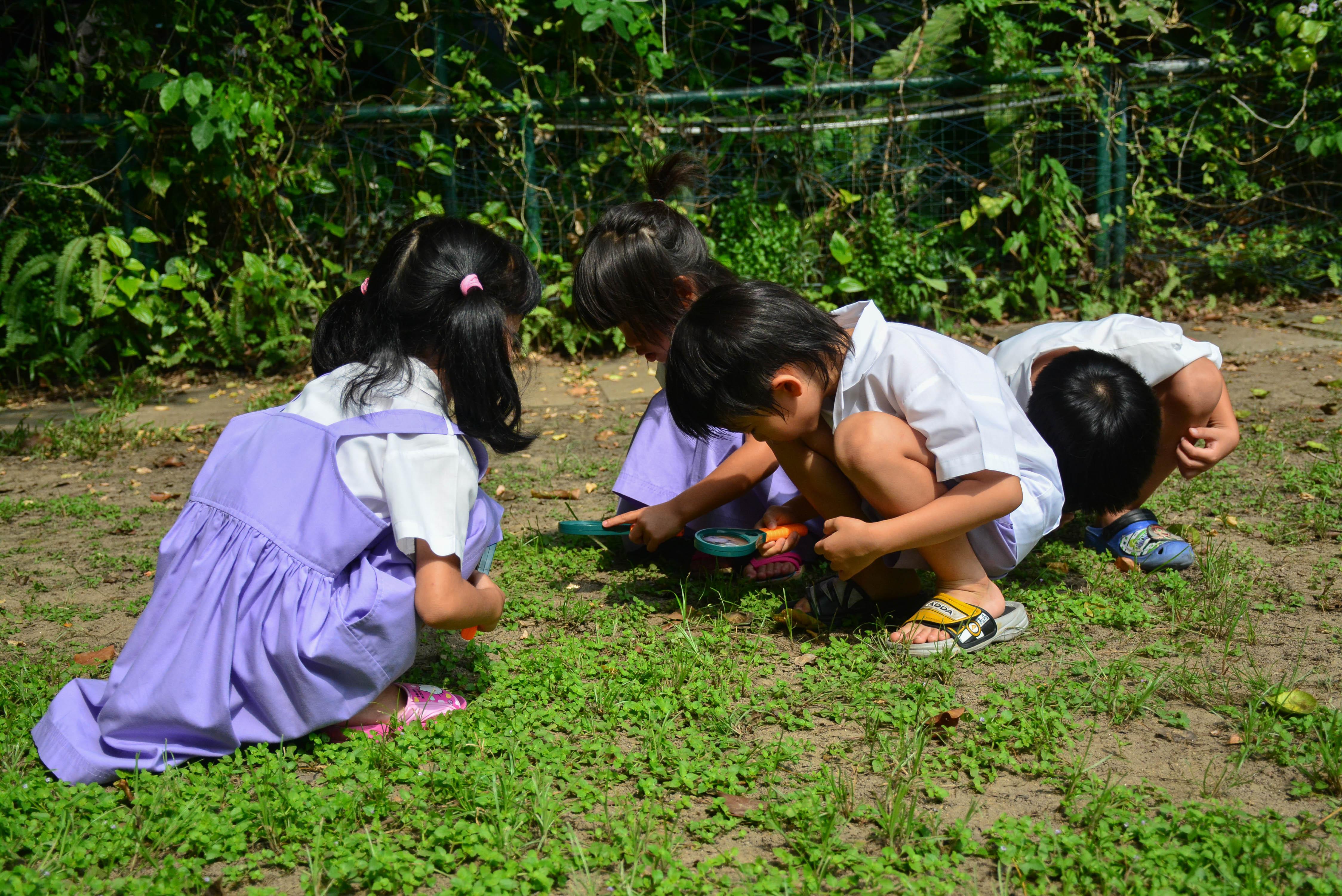 อนุบาล ๓ กับวันแรกของ บทเรียนธรรมชาติ