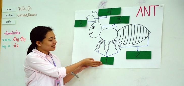 หลักสูตรวิชาภาษาอังกฤษโรงเรียนทอสี