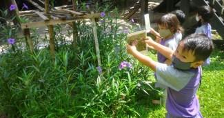 งานสวน ของเด็กๆ ห้องดอกจำปี